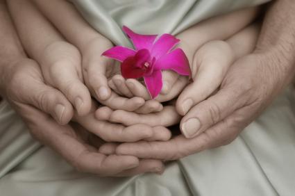 Drei verschieden alte Hände halten gemeinsam eine Blüte